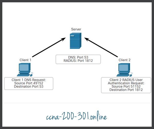 Clients Sending UDP Requests