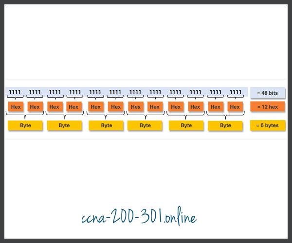 Ethernet MAC Address example