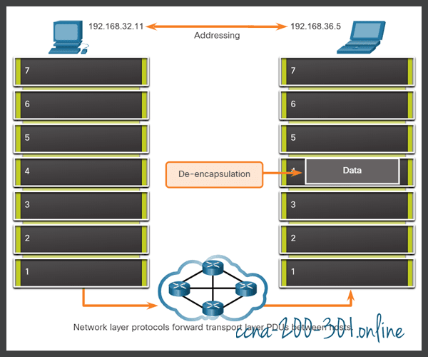 Exchange of data Network Layer