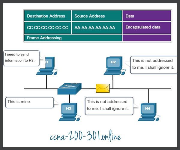 Frame forwarding process
