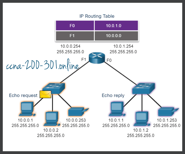 Ping a Remote Host
