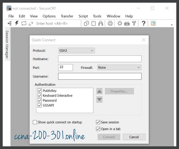 SecureCRT Interface