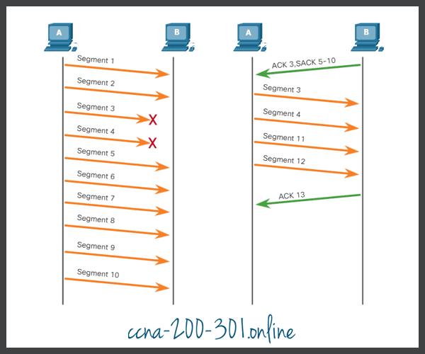 TCP segment numbers