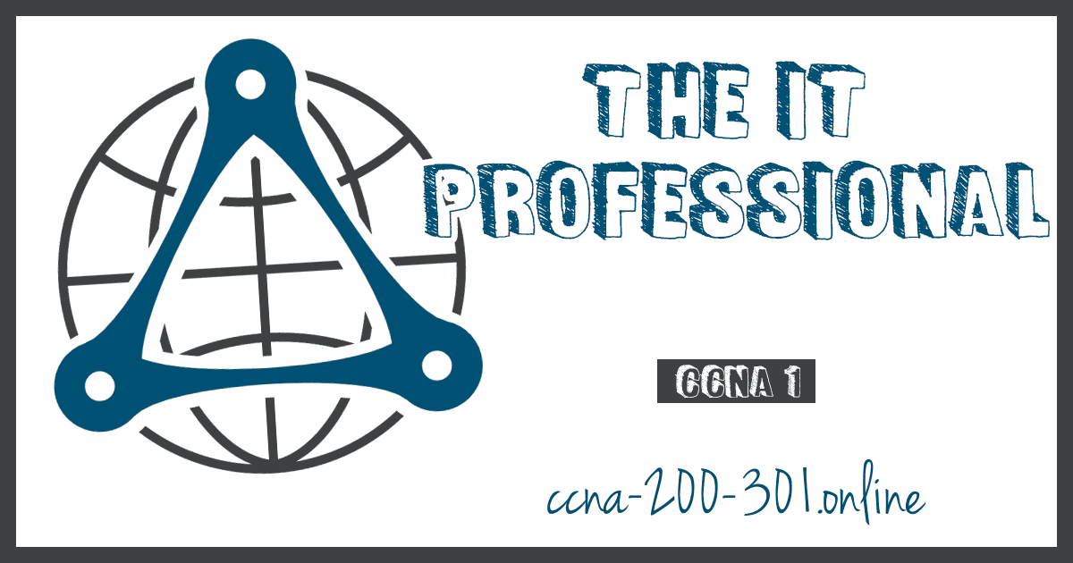 The IT Professional CCNA
