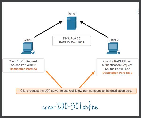 UDP Request Destination Ports
