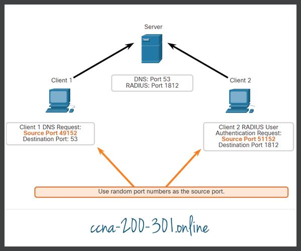 UDP Request Source Ports