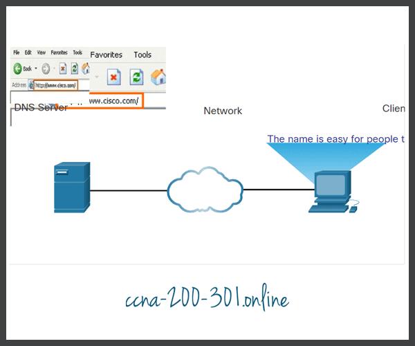 DNS Step 1
