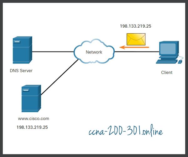 DNS Step 5