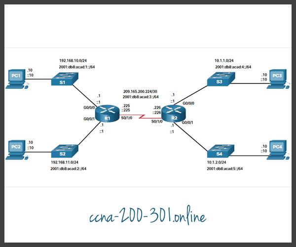 Interface Verification Commands
