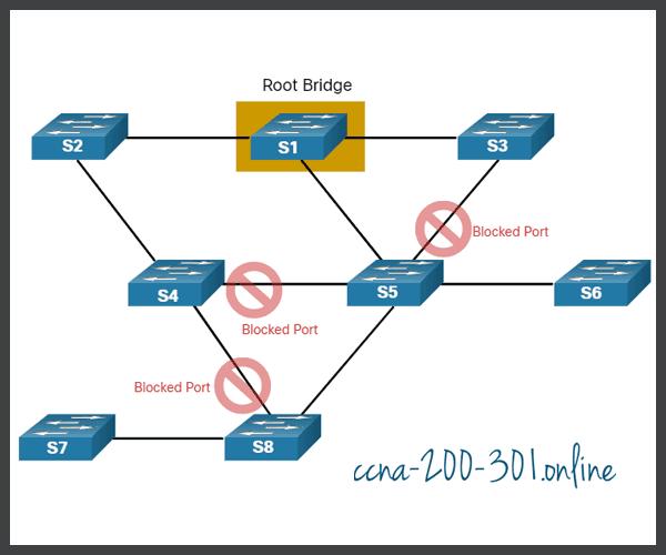 Loop-Free Topology