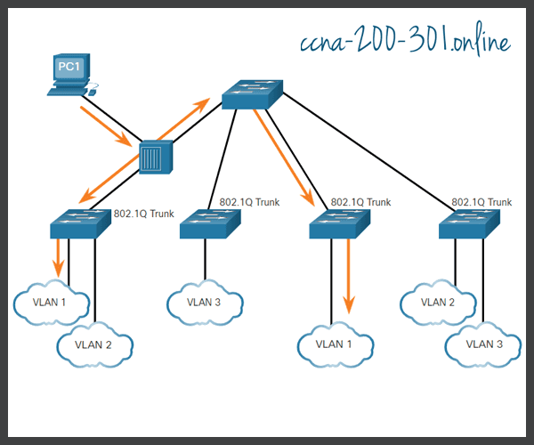 Native VLANs & 802.1Q Tagging