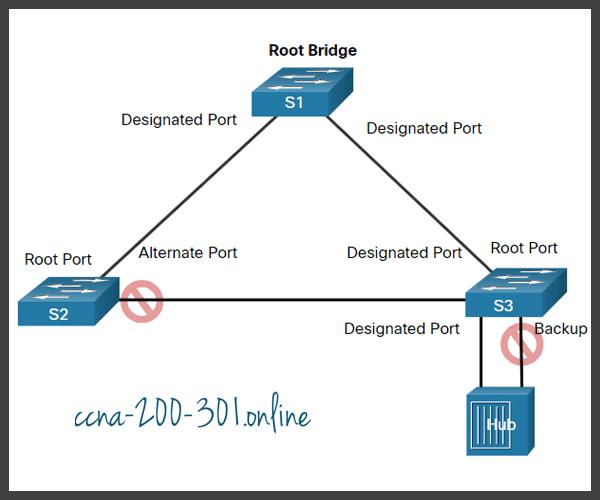 RSTP Alternate and Backup Ports