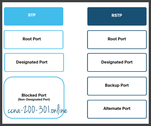 STP and RSTP Port Roles
