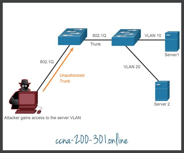 VLAN Hopping Attacks