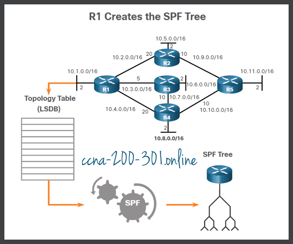 Execute the SPF Algorithm