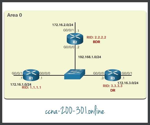 OSPF Multiaccess Reference Topology