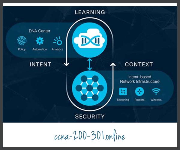 Cisco DNA Continuous Implementation