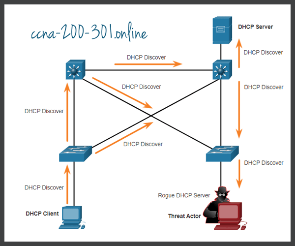 DHCP Discovery Messages