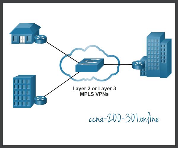 Service Provider MPLS VPNs