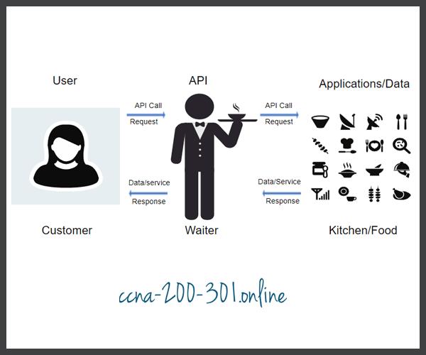 The API Concept